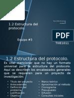 Estructura Del Protocolo