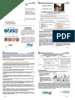 Induccion 2015 PDF