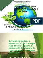 Expo Ecologia 1