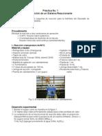 Practica Definicion de un Sistema Reaccionanted