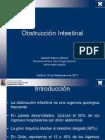 Obstrucción Intestinal (UACH)