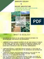 Importance of Ecology in Landscape Design