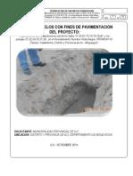 Informe Nº 03 Vista Alegre