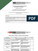 Criterios de Calificación Propuestas de Prácticas Pedagógicas 1 y 2_prim_sec_participantes