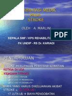 Stroke Dr. Marlini