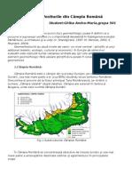 Geomorfositurile Din Câmpia Română