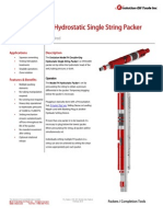 FH Double-Grip Packer Technical Datasheet