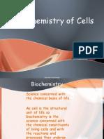Organic Biochemistry