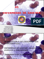 Power Point Lisosomas y Enfermedad de Gaucher