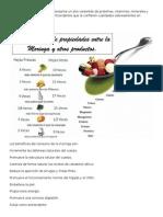 macazal o Moringa olefeira