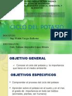 Ciclo Del Potasio-ima1000