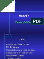 M1-Teoría Del Caso