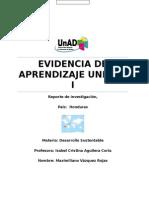 DS U1 EA MAVR, Evidencia de Aprendizaje