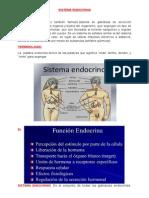 Sistema Endocrino Trabajo