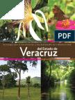 Biodiversidad Estrategia Veracruz
