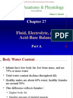 Intra and Extracellular Fluid