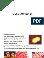 CURS 7. Mitache - Cocii Gram negativi – Genul Neisseria..ppt