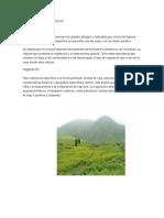 Aspectos biologicos de las Lomas Costeras