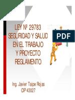 Presentacion Ley 29783 LSST