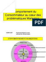 comportment de consomateur