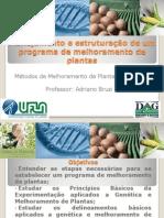 Aula+-2+Planjemanto+e+Estrutura%C3%A7%C3%A3o+de+um+Programa+de+Melhoramento[1].pdf
