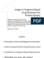 Challenges in Fragment Based Drug Discovery for Protein Kinases 2013