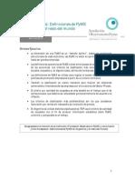 IE Definicion PyME-FOP-Abril 2013