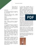 Papper Final Instrumentacion 2