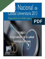 ASEGURAMIENTO DE LA CALIDAD ESTRATEGIAS INTERNA.pdf