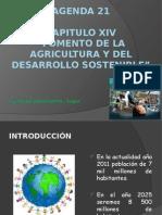 Fomento de La Agricultura