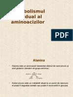 Metabolismul Individual Al Aminoacizilor