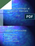 Sinusuri Curs 2010