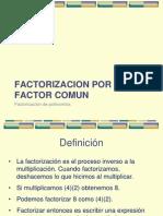 3 Factor Comun y Agrupacion Ckr