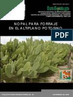 Nopal Para Forraje en El Altiplano Potosino