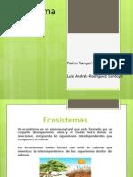 1.1.2 Ecosistemas DESV