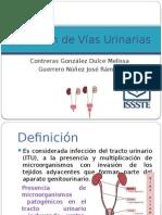 Infeccion Vias Urinarias