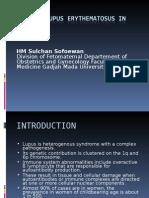 3. Sulchan - Prof. Ssystemic Lupus Erythematosus in Pregnancy Revisi1