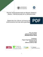 Desarrollo de cultivos primarios de biopsias embrionarias bovinas para genotipado masivo