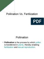 Pollination vs Fertilization