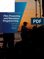 India - firm financing