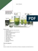 2-Algae-for-Dummies.pdf