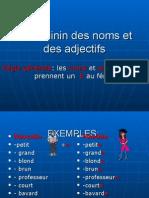 7 Le Fminin Des Noms Et Des Adjectifs p.p. (1)