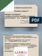 Proiect managementul riscurilor in afaceri Dranca Ana.pptx