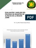 EVALUACIÓN Y ANÁLISIS DEL PROCESO DE REGISTRO DE ALPACAS DE LA REGIÓN JUNÍN