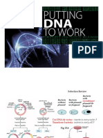 L18Biol261 DNA TechnolWRecomb
