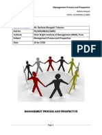 Management Process and Prospective