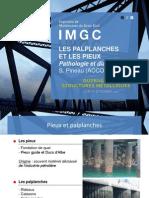 Les Palplanches Et Les Pieux - Pathologie Et Diagnostic