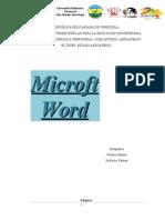 Microtf Word