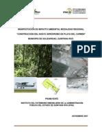 AERODROMO DE PLAYA DEL CARMEN MIA.pdf