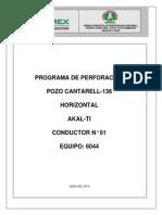 Prog Perf Horz C-136 (AKAL-TI) preliminar II.pdf